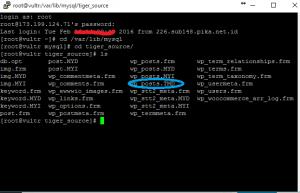 MYSQL table in use SSH